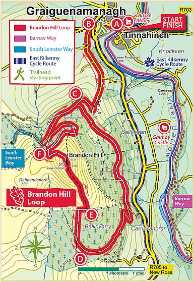 Brandon Hill loop walk Co Kilkenny Best Walks